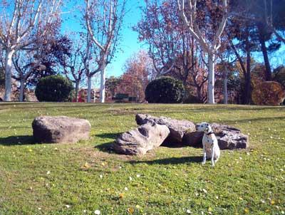Zara en el <p> parque grande