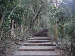 Cerro de México